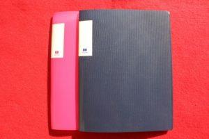 A5サイズクリアファイル(CANDO)